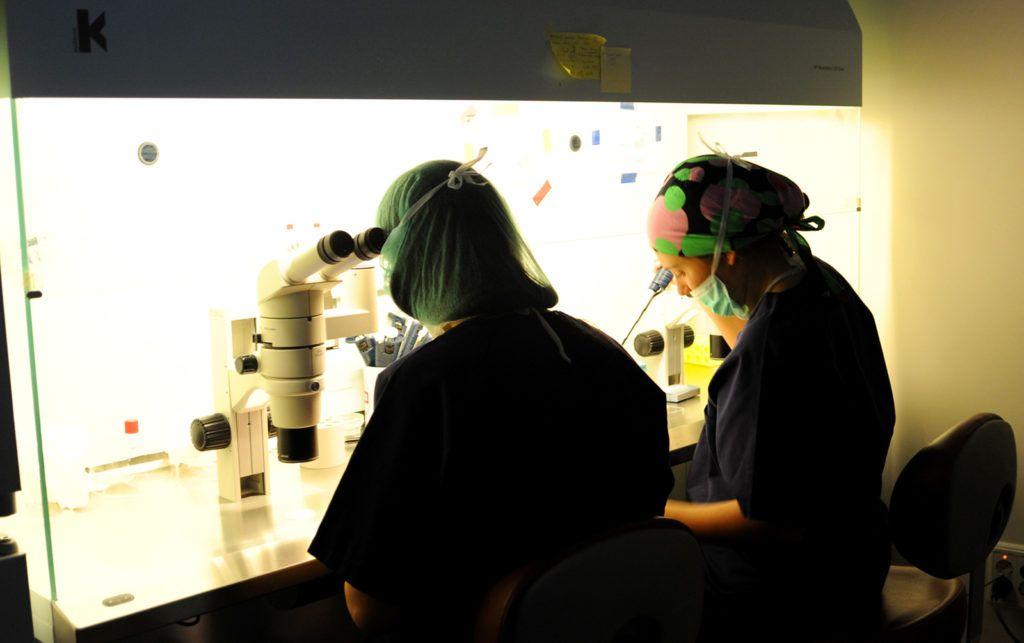 Laboratorio de Embriología