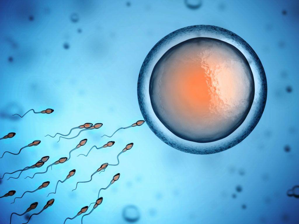 banco de esperma