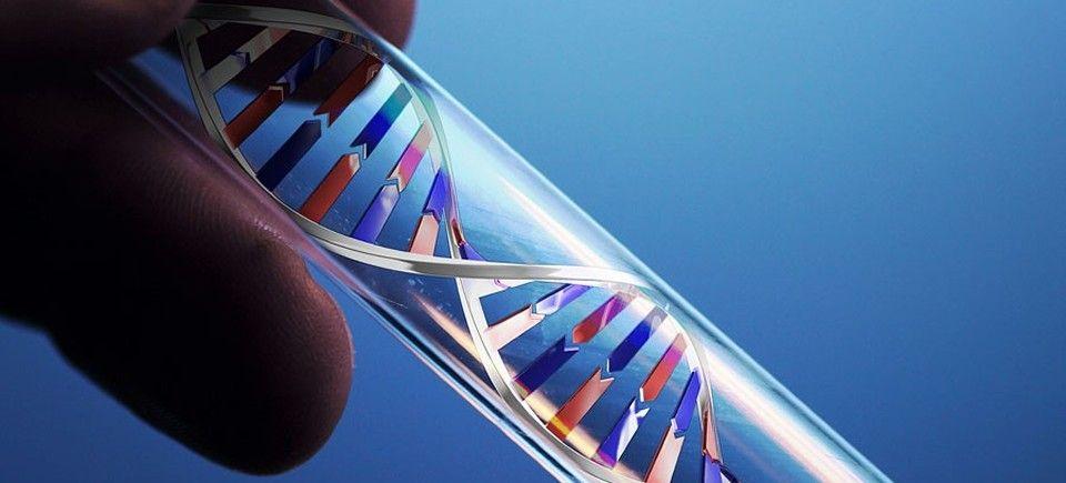 test genética